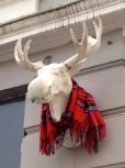 Festive Moose