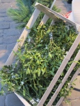 Mistletoe Crate