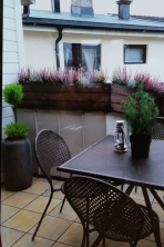 Terrace (with my fresh plantings.)