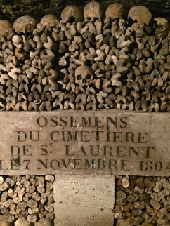 The bones come from the old decommissioned cemeteries in Paris.