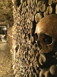 Originally the bones were piled five feet high and 80 feet deep.