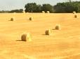 Golden hay bales glistening in the scalding sun.