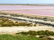 The salt flats of Salin de Giraud are commercially harvested for their Fleur de sel (flowers of salt.)