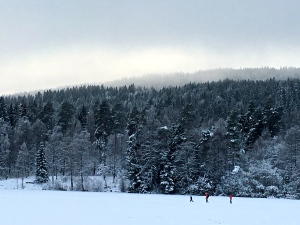 A few skiers cross the frozen surface of Sognsvann Lake.
