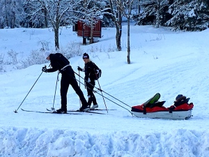 Cross-country ski sled