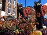 "The ""Purrrfumes of the Past"" float featured two ladies dressed like Catwoman, who prowled through the crowd while meowing and acting like strays."