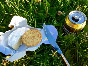 A little brie, crackers, and Ringnes beer, and you've got yourself a meal -- and a lure for the OCD Can Lady.
