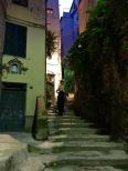 All the Cinque Terre towns possess narrow alleys that eventually converge towards trails that lead from one village to the next. (And yes, I'm taking a short, after-dinner hike wearing heels and a long dress -- it's amazing how much a little wine inoculates you against common sense.)