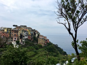 "Corniglia roosts atop a rocky spur that likely gives the town its name. (""Corno"" means ""horn"" in Italian.)"