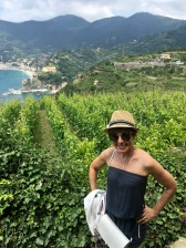 More gorgeous vineyards, and a peep at Monterosso al Mare beyond.