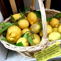 """Lovely lemons caution that they're not for sale, as they'll soon become granita -- what we call a slushy form of """"Italian ice"""" back in the States."""