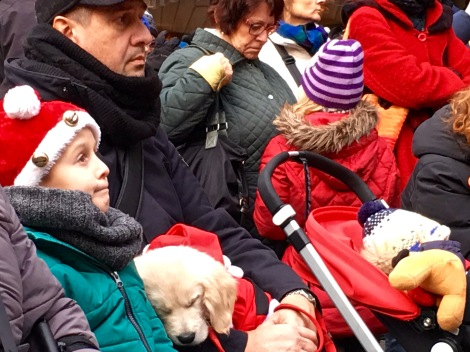 "The ""Singing Christmas Tree"" choir has lullabied to sleep this boy's festively dressed puppy."