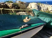 Who said cats on board a boat are bad luck?