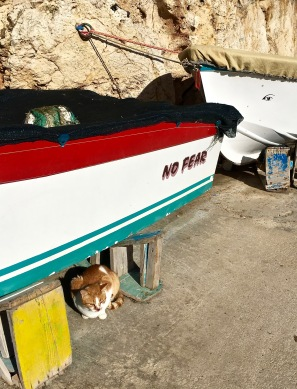 "A good motto, Mr. Kitty. Wished I could have mastered it before our trip. Look closely at the second boat, and you'll see that it has an ""evil eye"" on the side, to scare away bad luck."