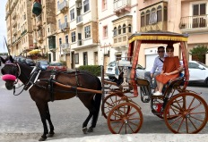 You can also catch a ride in a rickshaw or even a horse-drawn carriage. Although they're not super cheap, they're probably the most picturesque way to take in the town.