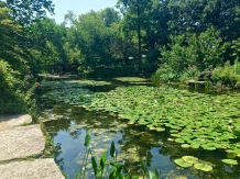 One of my favorite summertime respites is the sleepy Alfred Caldwell Lily Pool, which is tucked away behind an Arts & Crafts archway across from the Peggy Notebaert Nature Museum -- another great spot to learn about the unique ecosystem of a Midwestern prairie. In the background, you can see a Prairie-style teahouse, and on the right you can just barely make out the end of the rock waterfall.